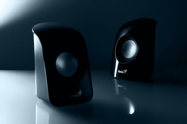 Ds18 Speaker Review